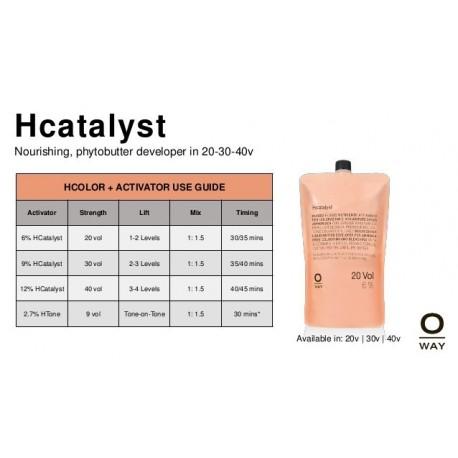 Hcatalyst